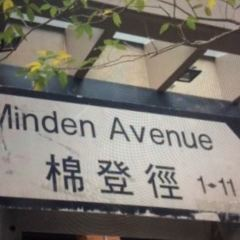 Minden Avenue User Photo