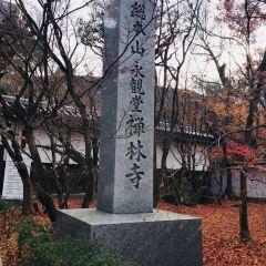 禪林寺(永觀堂)用戶圖片