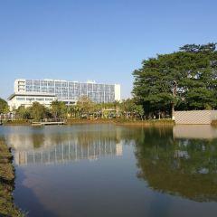 Pingshan Park (Southwest Gate) User Photo
