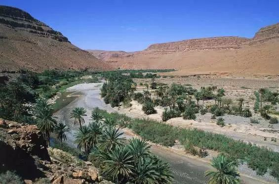 荒漠中綻放的美麗,這些沙漠綠洲比海市蜃樓更加神奇