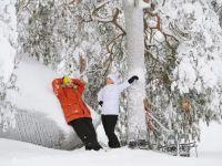 芬蘭冬季安全出行寶典