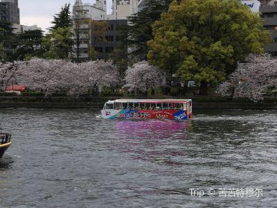 Osaka Duck Tour