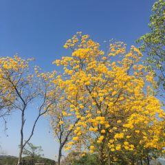 Senbola Volcanic Hot Spring User Photo