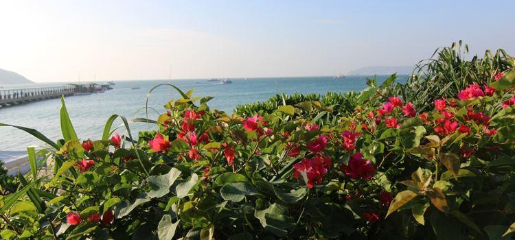 Aegean Conifer Suites Resort Sanya3