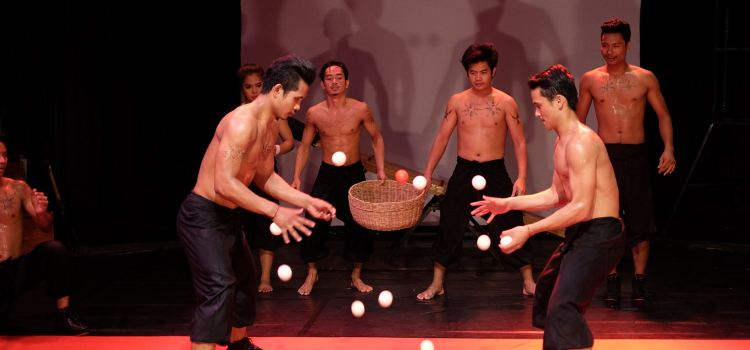 Phare-The Cambodian Circus3