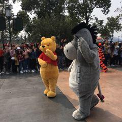 Shanghai Disneyland Band User Photo