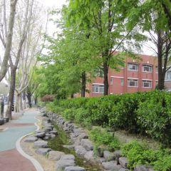 서울 대학로 여행 사진