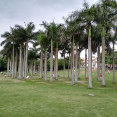 Huaqiao Park User Photo