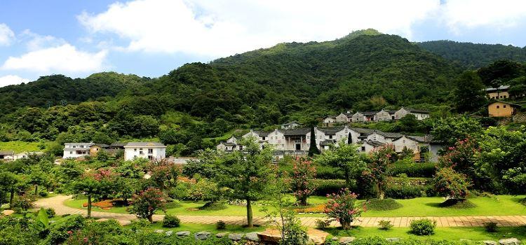 Yannan Feiqiao Stream Scenic Area3
