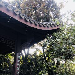 류랑원잉 여행 사진
