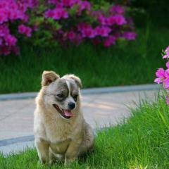 Aohua Weijing Hot Spring User Photo