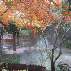 南京湯山禦豪溫泉用戶圖片