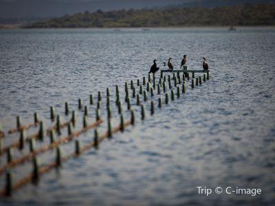 观菲欣纳海洋农场