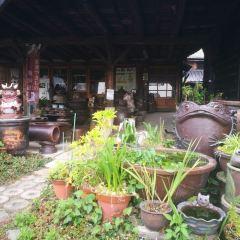 Tokoname City Pottery Footpath User Photo