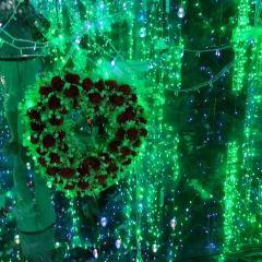 愛徠星空錯覺藝術館用戶圖片