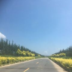 차얼후 관광구 여행 사진