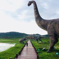 Rice Park User Photo
