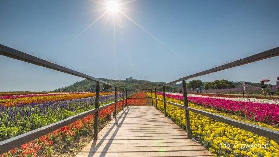 Xuelang Mountain Ecological Park
