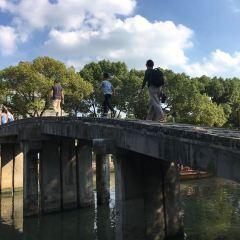 帶城橋下塘用戶圖片