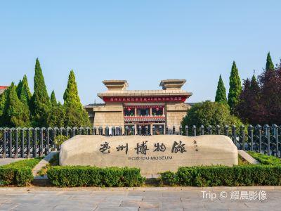 박주박물관