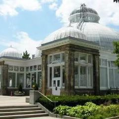 Allan Gardens Conservatory User Photo