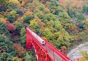 日本賞楓備忘錄   黑部峽谷小火車