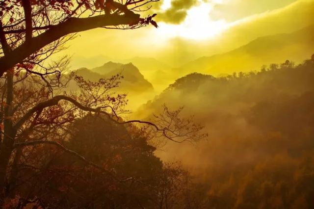 11月最佳旅行地丨這些地方已經美成仙境,再不出發就晚了