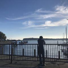 Mermaid Quay User Photo