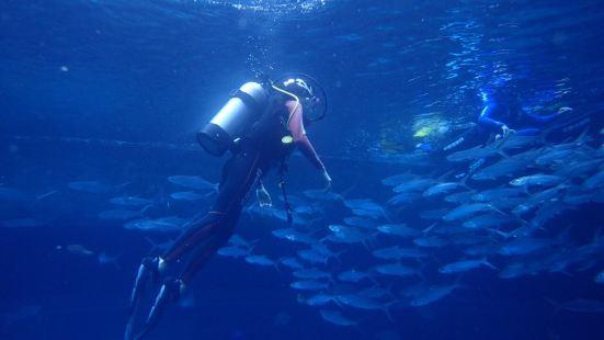 三亞特締思潛水中心