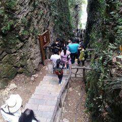 張家界大峡谷玻璃大橋のユーザー投稿写真