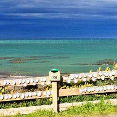 Catlins Coastal Heritage Trail User Photo