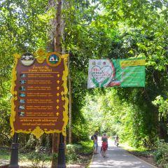 Erawan National Park User Photo