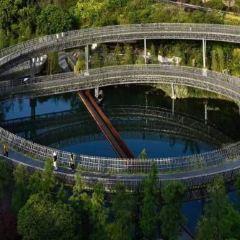 西湖公園彩印社用戶圖片