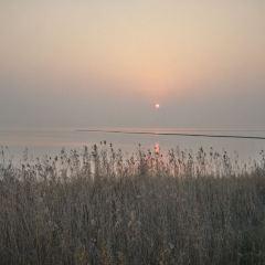 月亮灣濕地公園用戶圖片