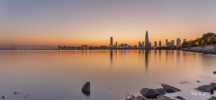 Shenzhen Bay Park1