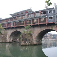 虹橋藝術館用戶圖片
