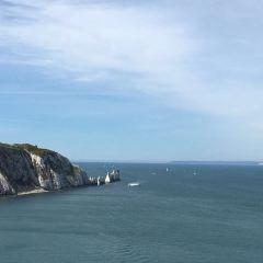 Seaview Wildlife Encounter用戶圖片