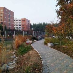 Anyang Institute of Technology Library User Photo