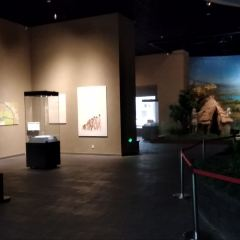 宿遷市博物館新館用戶圖片