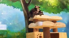 童逸萌宠动物园-银川-AIian