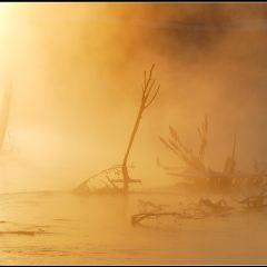 Teat River User Photo