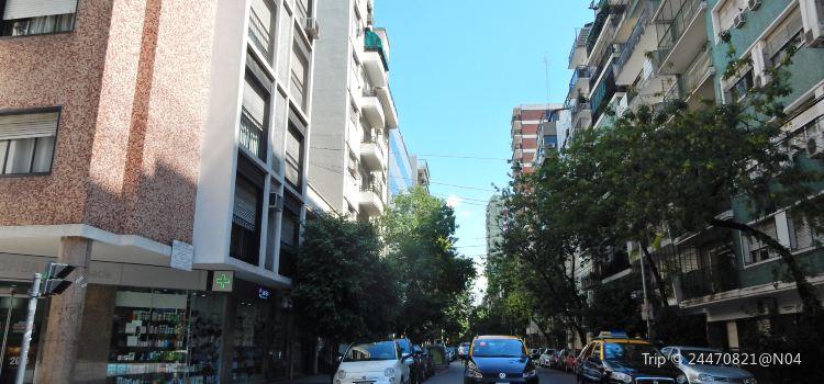 Palermo Soho1