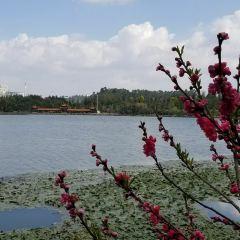 Luolong Park User Photo