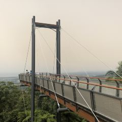 Forest Sky Pier User Photo