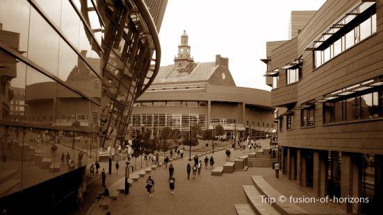 波士頓設計中心