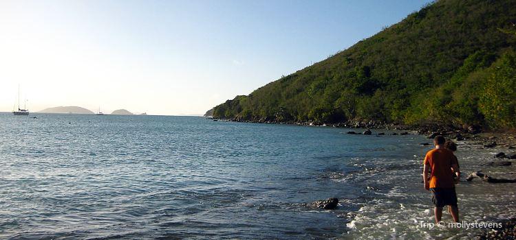 Francis Bay3