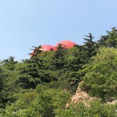 信號山公園用戶圖片