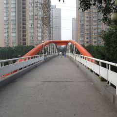 長安大學彩虹橋用戶圖片
