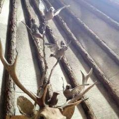 아오루구야 어원커족 원시부락 여행 사진