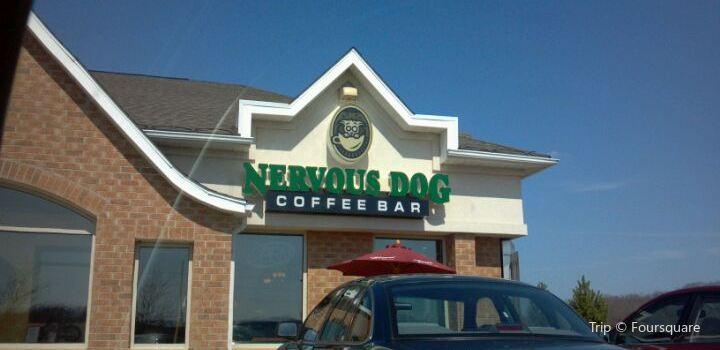 Nervous Dog Coffee Bar1